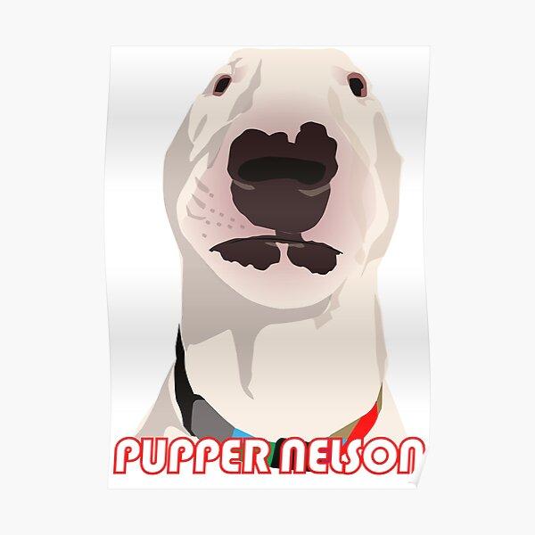 @PupperNelson: Cartoon Meme  Poster