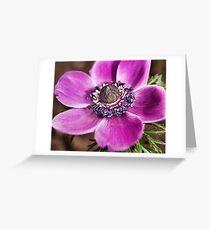 Purple Flower Greeting Card