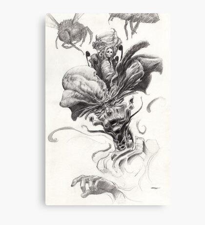 The Scientist  Canvas Print