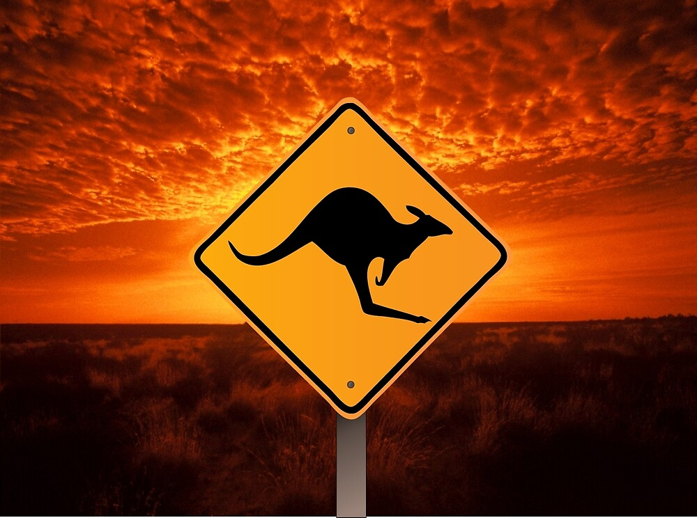 Be Careful Kangaroos! by ELARTIST