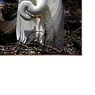 Great Egret couture by Janice McCafferty