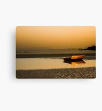 Lonely! Canvas Print
