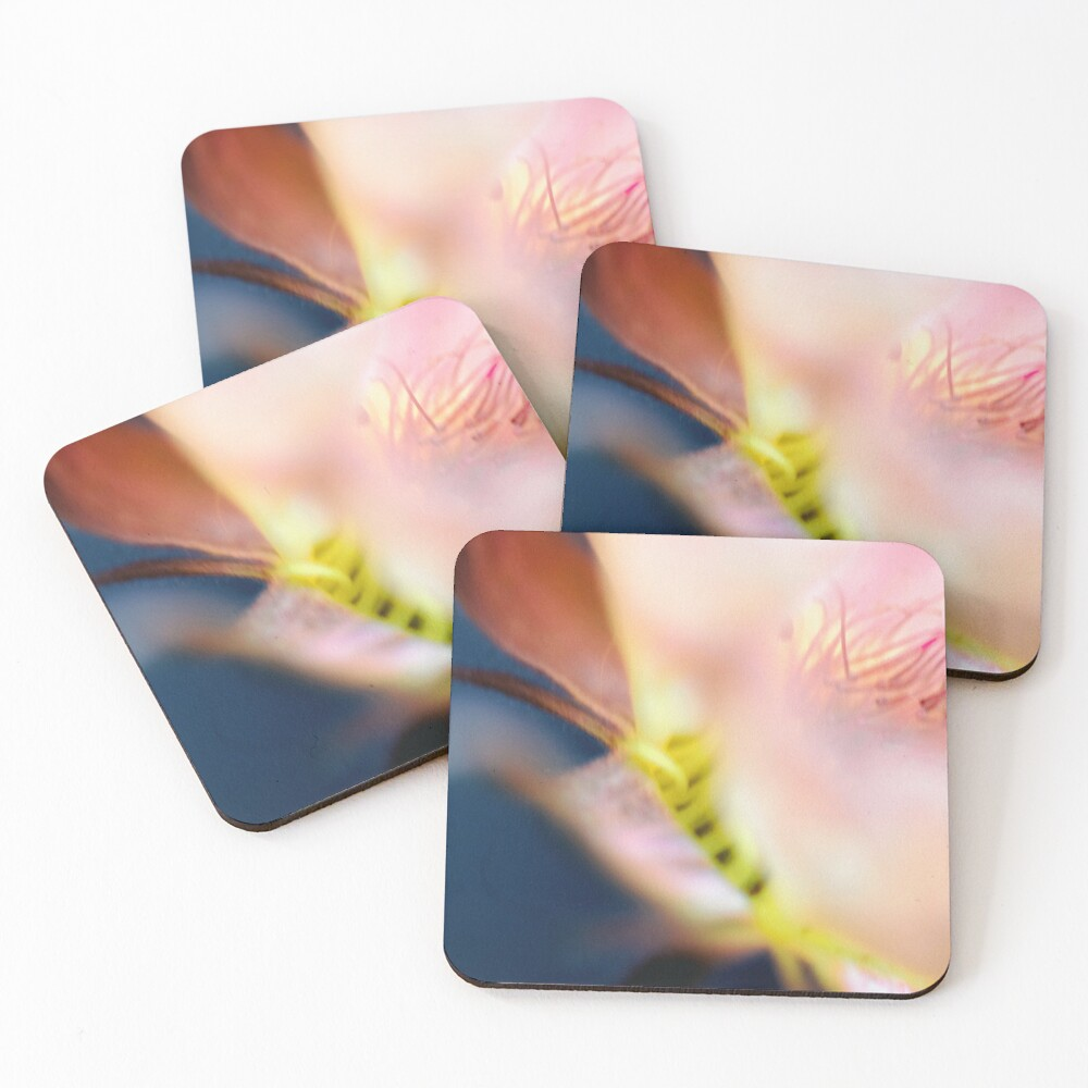 Flower Mystical Coasters (Set of 4)
