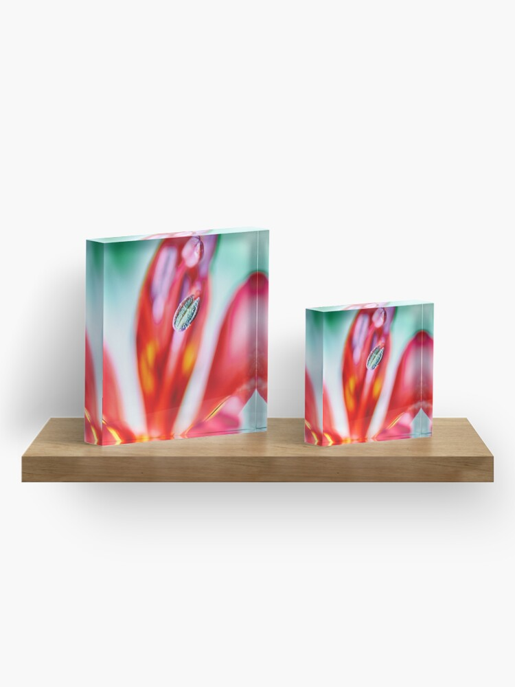 Alternate view of Flower Mystical  Acrylic Block