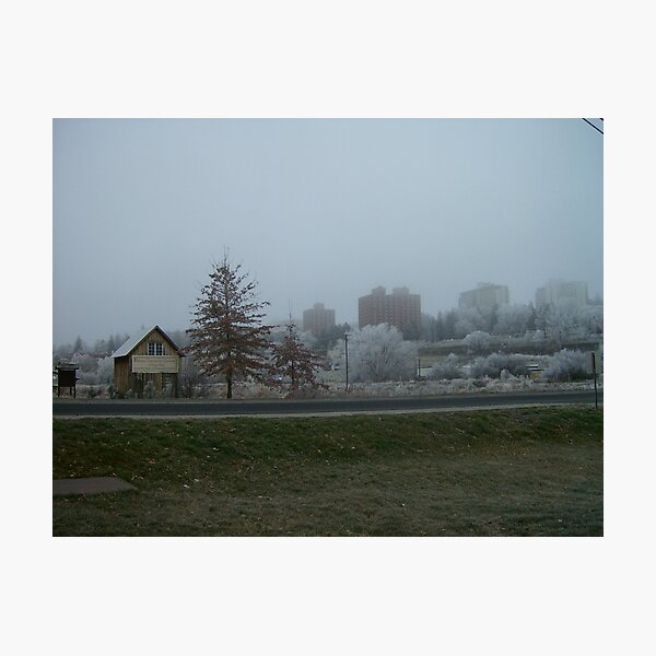 Snow Garden Photographic Print