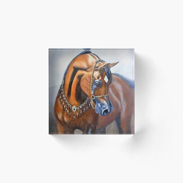 Arabian horse Acrylic Block