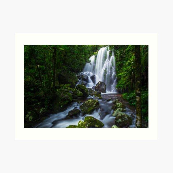 Chalahn Falls, Lamington NP Art Print