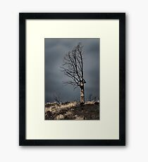After the Fire Framed Print