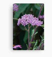 Pink flower cluster crown Canvas Print