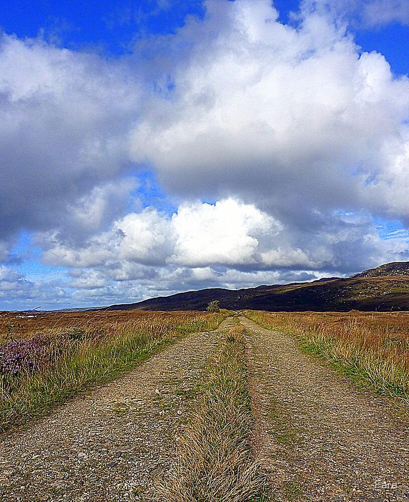 The Irish Bog Road by Fara