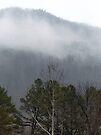 Foggy Mountain by FrankieCat