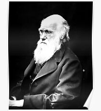 Charles Darwin | The Wighte Collection Poster