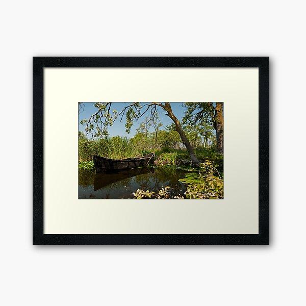 Cardon Framed Art Print