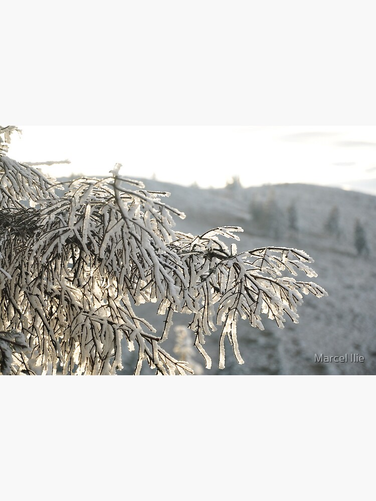 Snow by imaruseru