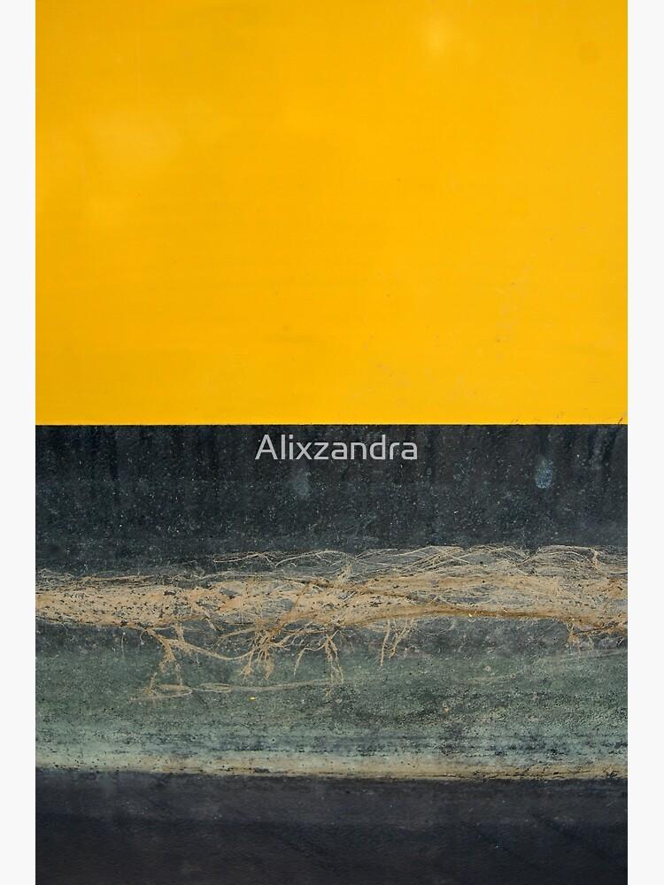 Gelb auf Blau von Alixzandra