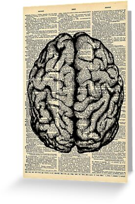 Body Anatomy Brain Dictionary Page Art Note Cards\
