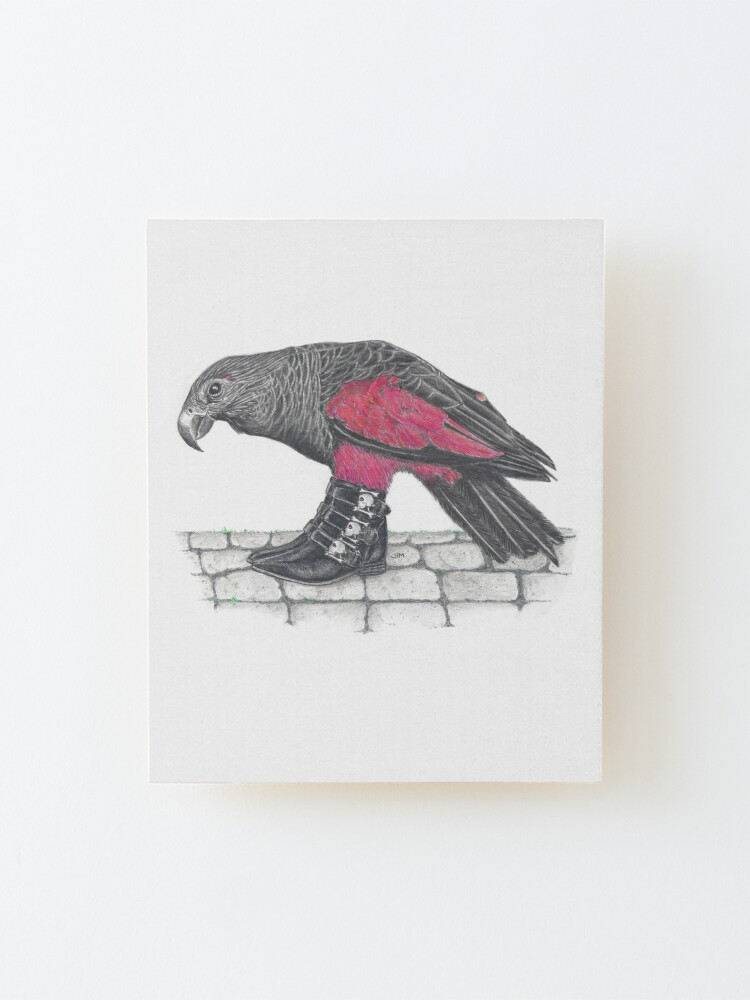 Alternate view of Dracula parrot in skull buckle boots Mounted Print