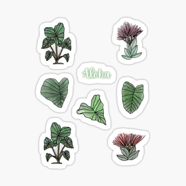 Aloha Kalo & Ohi'a Lehua Stickers Sticker
