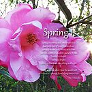 Spring Is by Terri Chandler