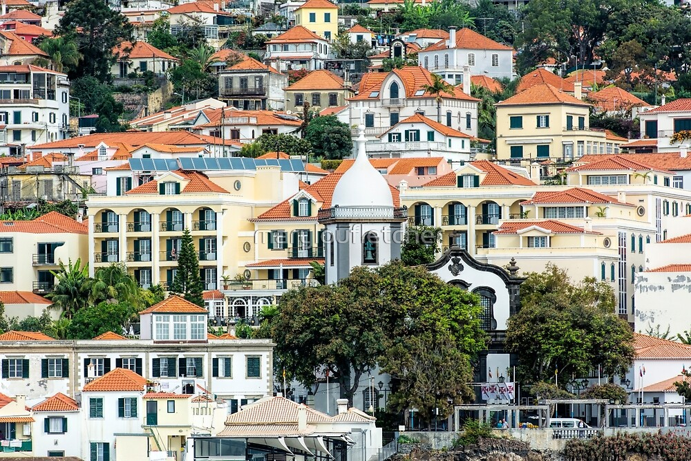 Funchal, Madeira houses by maryloufletcher