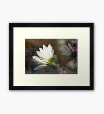 The Other Side of Daisy Framed Print