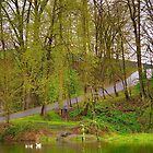 Spring Time in the Park by Cee Neuner