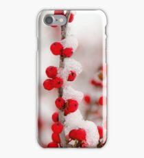 Red Berries in Winter iPhone Case/Skin