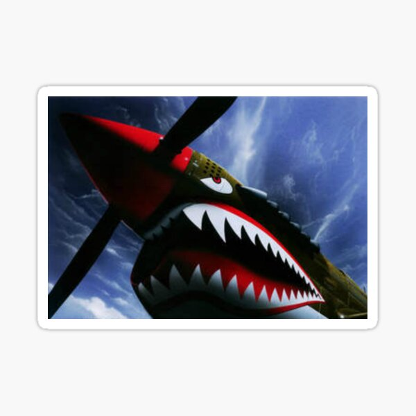 The Curtiss P-40 Warhawk Plane-American Fighter Aircraft Sticker