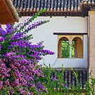 Generalife Window by MikeSquires