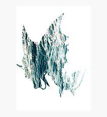 Mega Gyrados used Surf Photographic Print