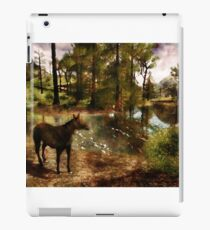 A River of Tranquility iPad Case/Skin