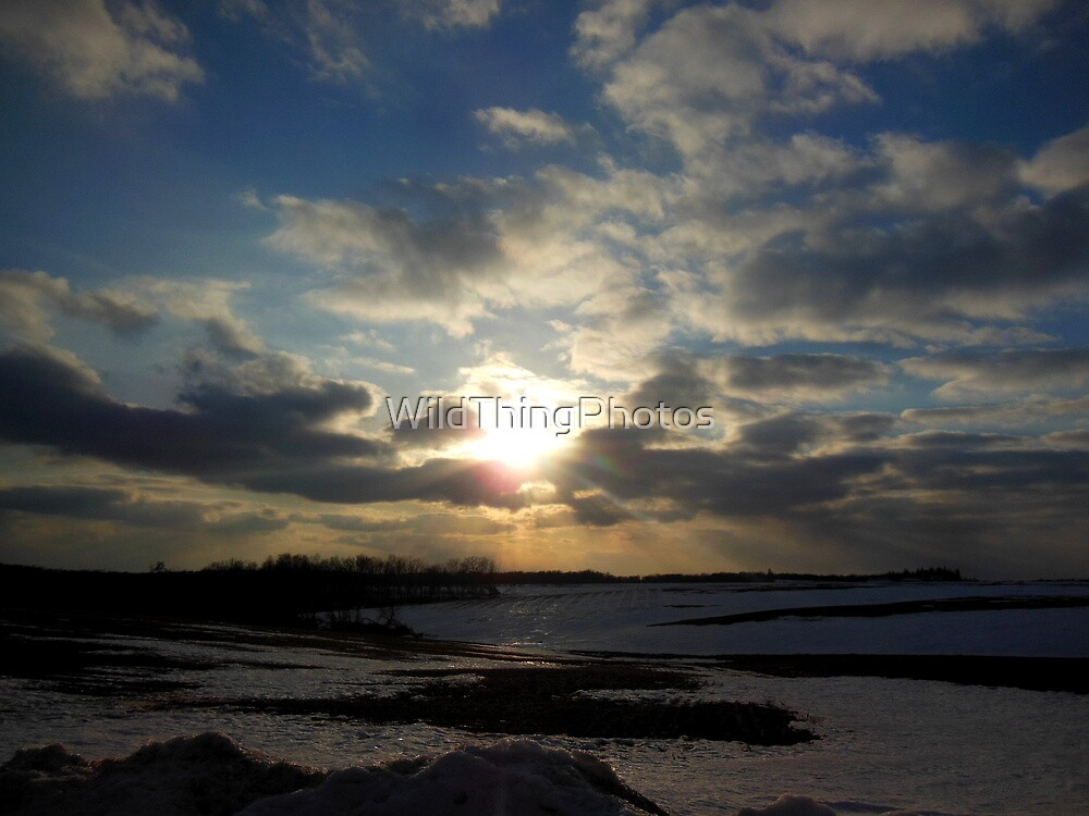 Twilight Burst by WildThingPhotos