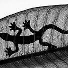 Lizard Silhouette by Ladyshark