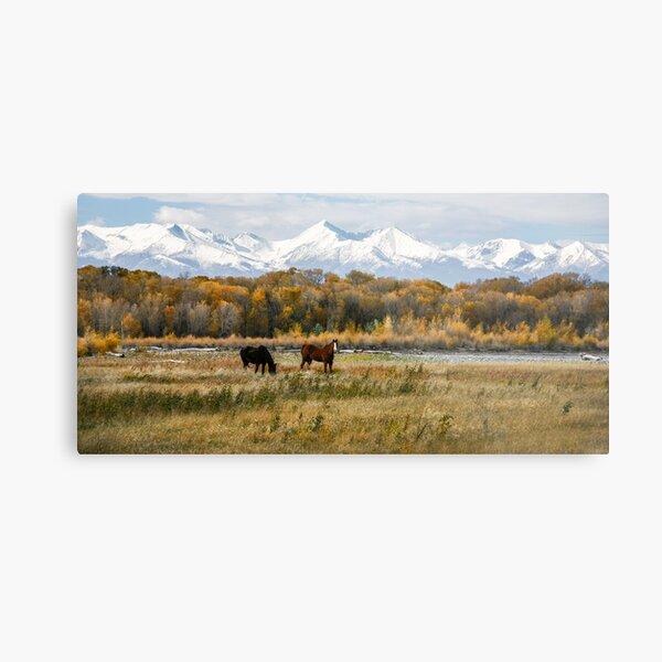 Fall Landscapes Metal Print