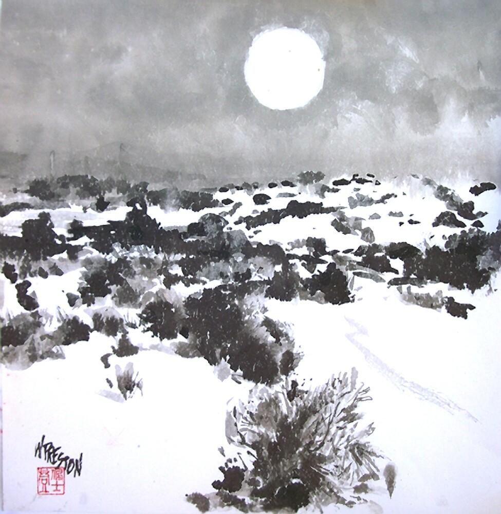 Winter Moon in the High Desert by williampreston