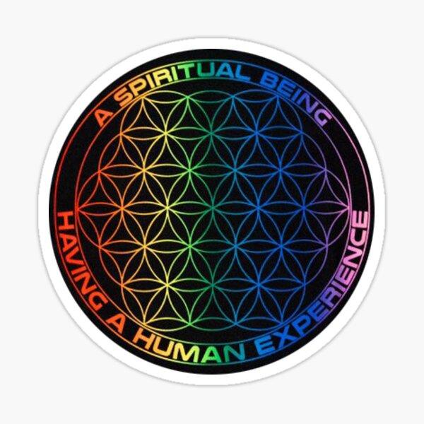 Spiritual Being Having a Human Experience Sticker