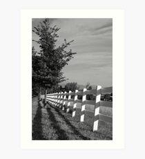 Tree Lined Fence Art Print