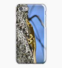 Yellow Gecko iPhone Case/Skin