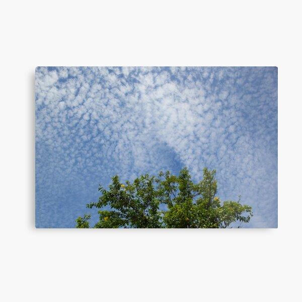 Carefree Clouds Metal Print
