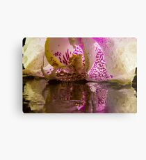Rainy Orchid Metal Print