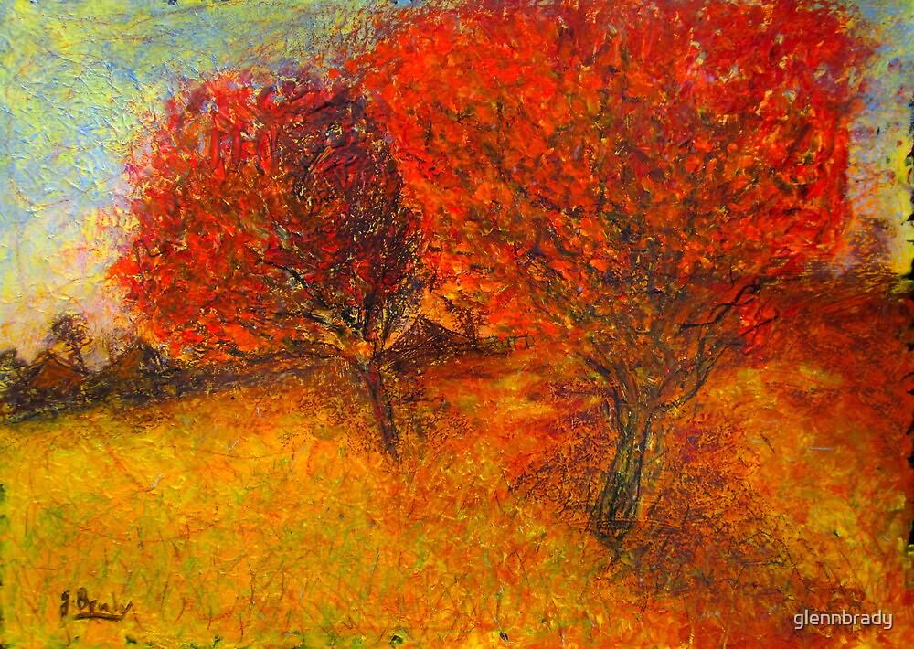 autumn tree's by glennbrady