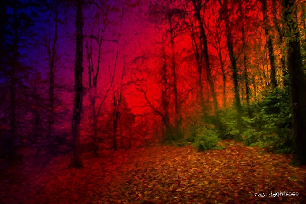 Autumnal Abstract  by Lightrace