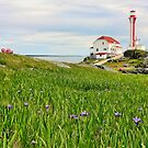Cape Forchu Lighthouse in June by Debbie  Roberts