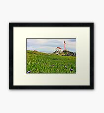 Cape Forchu Lighthouse in June Framed Print