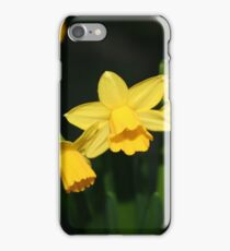 Calling the daffodils iPhone Case/Skin