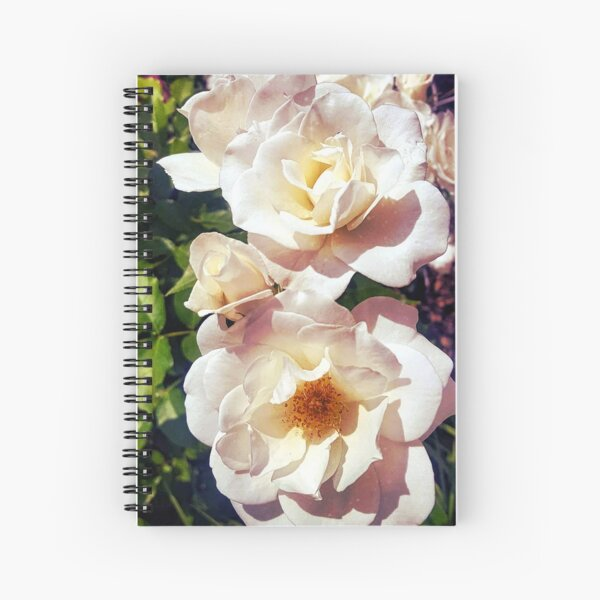 Early Spring Gardenia Roses Spiral Notebook