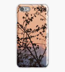 Natural iPhone Case/Skin