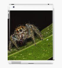 Jumping Spider 1 iPad Case/Skin
