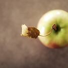 the apple by natalie angus