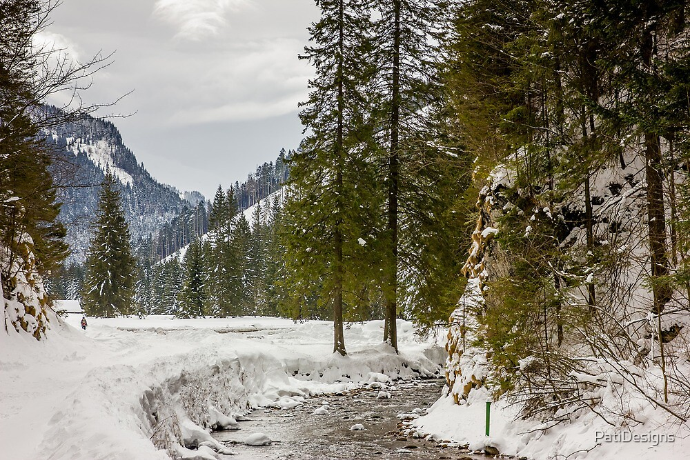 Winter Valley by PatiDesigns